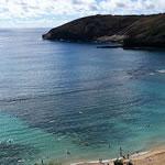 ハワイ エナジードリンクの旅2019