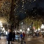 バンクーバー(カナダ) エナジードリンクの旅2019